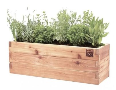 Foodie Christmas Gift Ideas Herb Garden